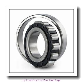 2.953 Inch | 75 Millimeter x 4.558 Inch | 115.78 Millimeter x 1.22 Inch | 31 Millimeter  INA RSL182215  Cylindrical Roller Bearings