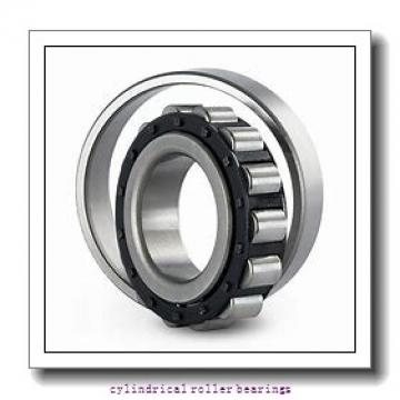 7.087 Inch | 180 Millimeter x 11.024 Inch | 280 Millimeter x 4.724 Inch | 120 Millimeter  INA SL06036-E  Cylindrical Roller Bearings
