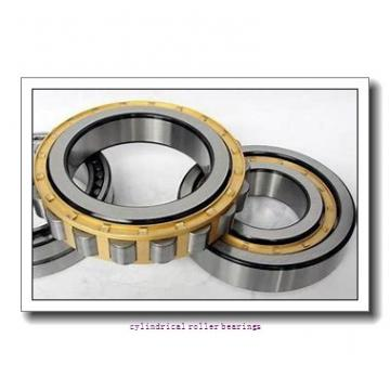 5.118 Inch | 130 Millimeter x 7.874 Inch | 200 Millimeter x 2.559 Inch | 65 Millimeter  INA SL05026-E  Cylindrical Roller Bearings