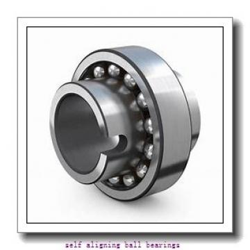 NTN 1221  Self Aligning Ball Bearings